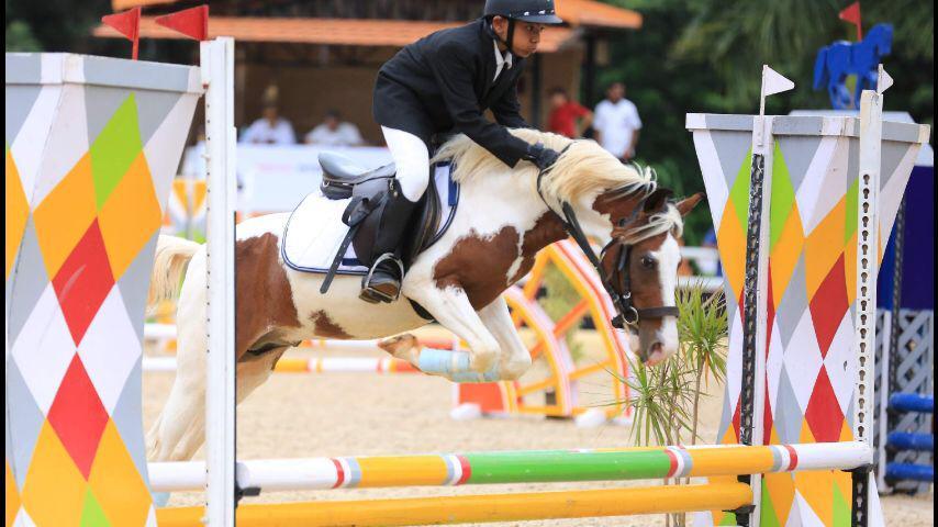 Royal Equestrian Academy